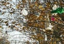 Le problème des sacs plastiques en Afrique.