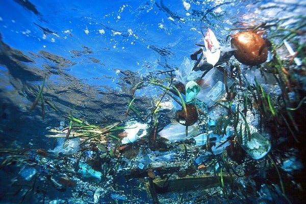 L'île de plastique surnommée Great Pacific Garbage Patch.