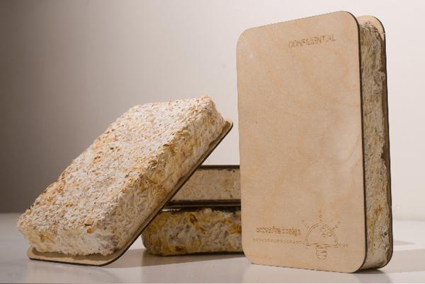 Un emballage à base de champignons, l'emballage du futur