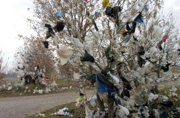 La pollution créée par les sacs plastiques