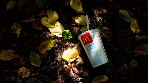 Les emballages de fast-foods finissants dans la nature.