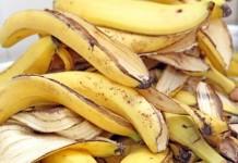Sacs écologiques en fibre de banane