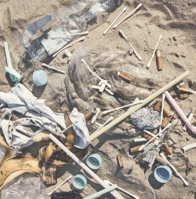 Le coton tige par partie des déchets que l'on retrouve dans le milieu marin.