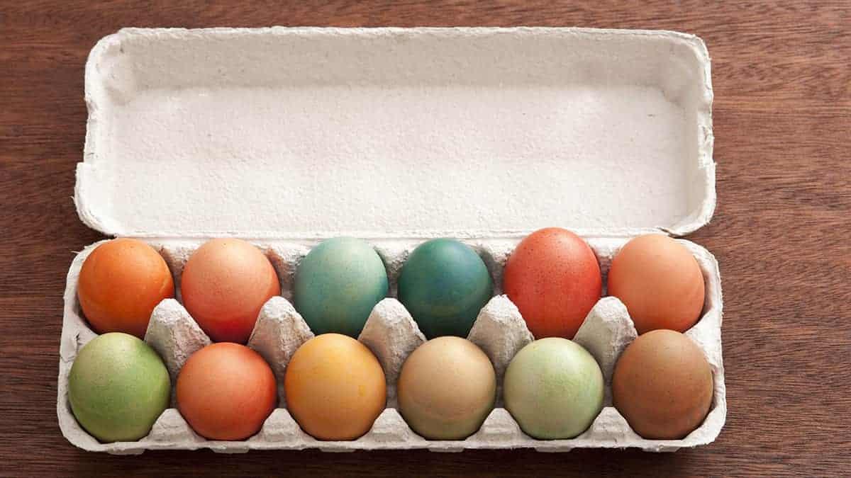 Boite à œufs réutilisable sans plastique